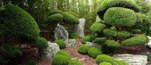 сад в японском стиле фото 15