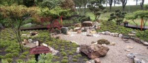 сад в японском стиле фото 33