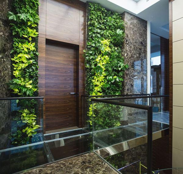 вертикальное озеленение фото 3