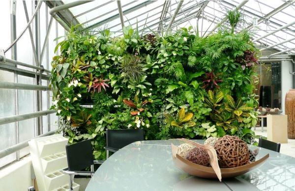 вертикальное озеленение фото 4