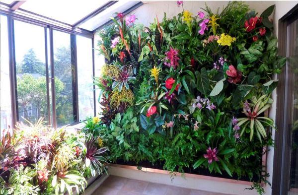 вертикальное озеленение фото 9